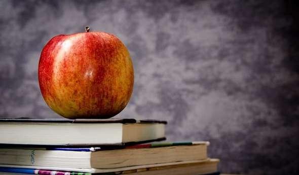 test Twitter Media - Cibo e scuola: idee per una #Merenda sana a tutte le età  #Alimentazione #ElisabettaCasciello #Libro #Mela #Napoli #Nutrizionista #TorreDelGreco #inRisalto #Starbene - https://t.co/lzTikO1kjz https://t.co/J89ZpMoYhw