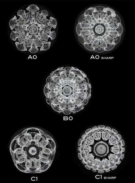 Photographs of musical notes based on the shape their vibrations make in a bowl of water. https://t.co/Hj6pFNQNEl