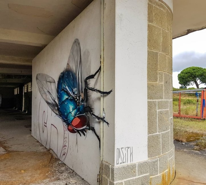 ... like the fly. Art by Odeith #StreetArt #Art #Realism #Beauty #3D #Graffiti #Mural #URbanArt https://t.co/OQA4VJbYG2