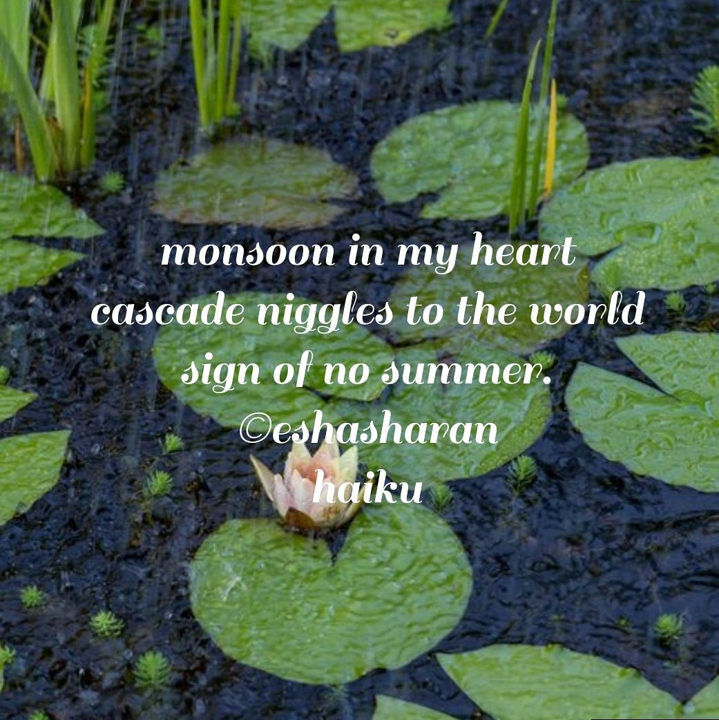 #haiku #haikuchallenge #haikudaily #Eshapoetry #haikumill  #monsoon #heart #world #summer  Enjoy the season monsoon, don't drown your heart in Monsoon. Keep your sorrows out, wash them in rain. #be #happy #peace #calm #love   #WriterShareCafe #WritingCommnunity #poetrycommunity https://t.co/I9uX44buxp