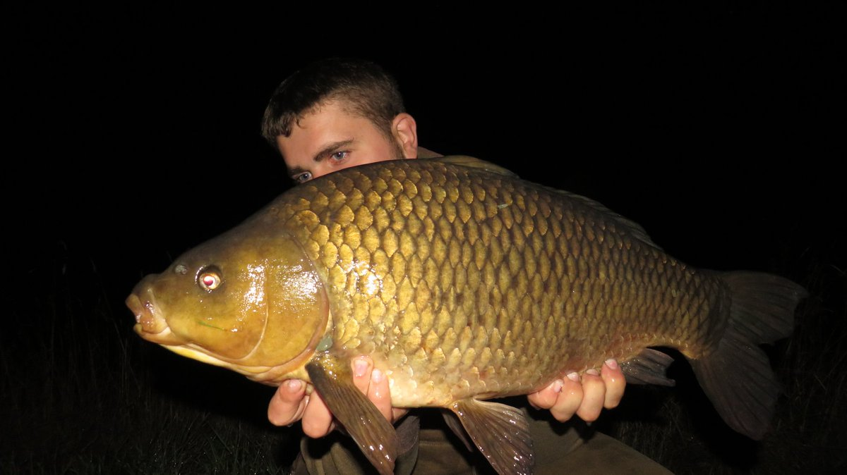 Was worth getting wet for. These self take photos aren't getting any easier though. #CarpFishing #Wo