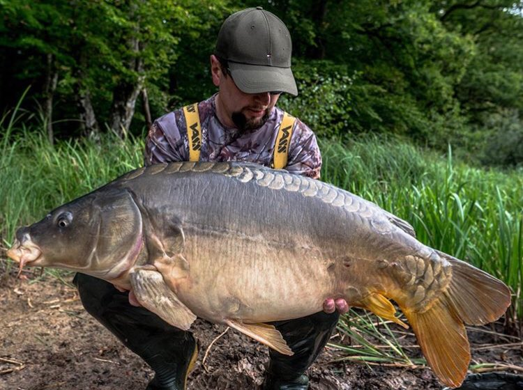 Another <b>Stunning</b> catch from Victor 💪🏻🎣 well done mate. @TheCARPbible  #Carp #CarpFis