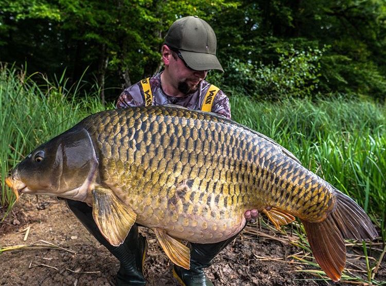 Another absolute <b>Stunning</b> catch for Victor!! @TheCARPbible  #Carp #CarpFishing #Fishing https