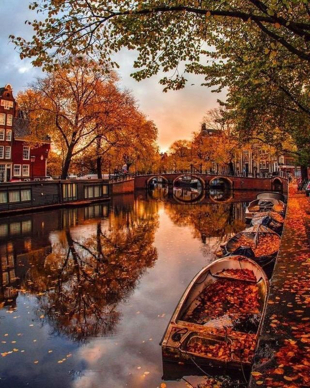 Autumn in Amsterdam looks straight out of a fairytale https://t.co/lzto46AAQO