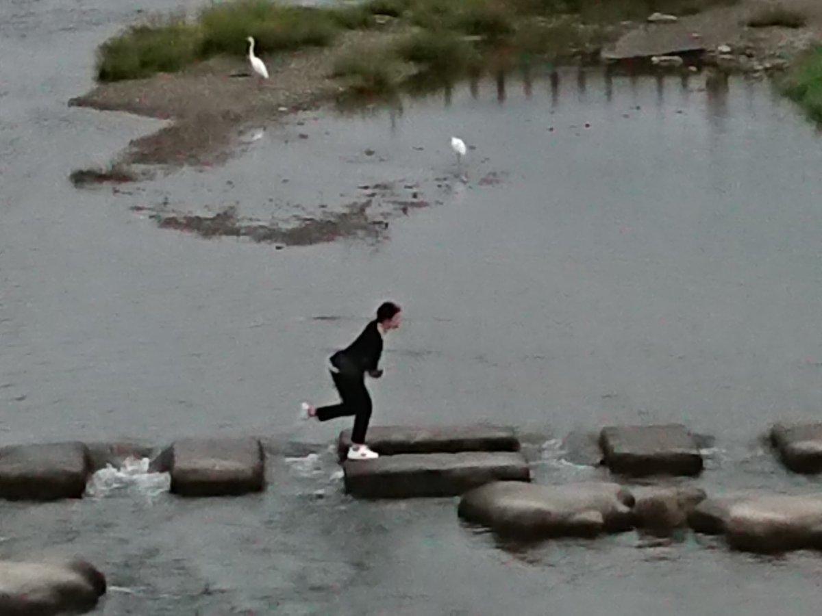 test ツイッターメディア - 京都市の北。 左京区の高野川と北区の賀茂川が合流する地点は昔から「鴨川デルタ」と呼ばれる。合流地点から南を「鴨川」と呼んでいる。 出町ふたばの豆餅を食べ歩いた後デルタをお散歩。 飛び石を飛び始めたけど幅が結構あって、早々に諦めた私。 跳び跳ねる相方嬢を橋の上から見守りましたとさ(笑)。 https://t.co/0fxMy4KwMz