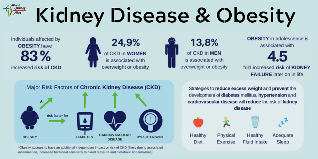 test Twitter Media - #DidYouKnow that #KidneyDisease is more likely to develop in #obese people, including those with #diabetes and #hypertension 😲 @WorldObesity   ➡️ https://t.co/lfAk8btutZ  #WorldObesityDay #ChronicKidneyDisease #Health #Kidneys #HealthForAll #NCDs https://t.co/n9Wxo5Prn1