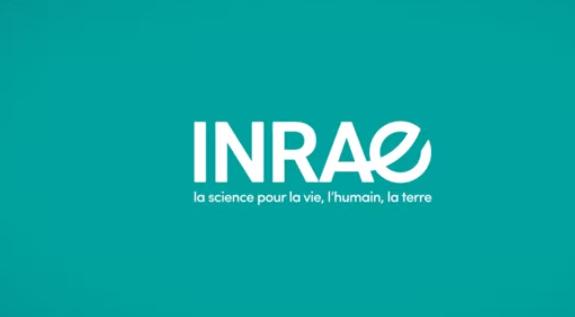 test Twitter Media - RT @CommodAfrica: Fusion de l'#INRA et de l'#IRSEA en France pour créer l'#INRAE #recherche #agriculture #environnement #Afrique #cotedivoire #Benin #BurkinaFaso #Senegal #Mali #Niger https://t.co/wsNXQyvau7 https://t.co/aBMbzc4OyS