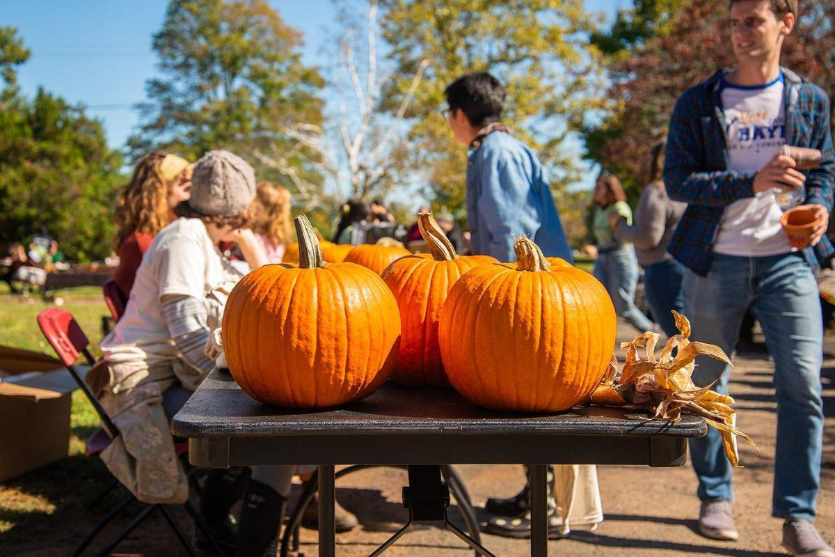test Twitter Media - PHOTOS: 16th annual Pumpkin Fest at Long Lane Farm 🍂🎃: https://t.co/tUPYvzyVHq https://t.co/8VIzmMgg53