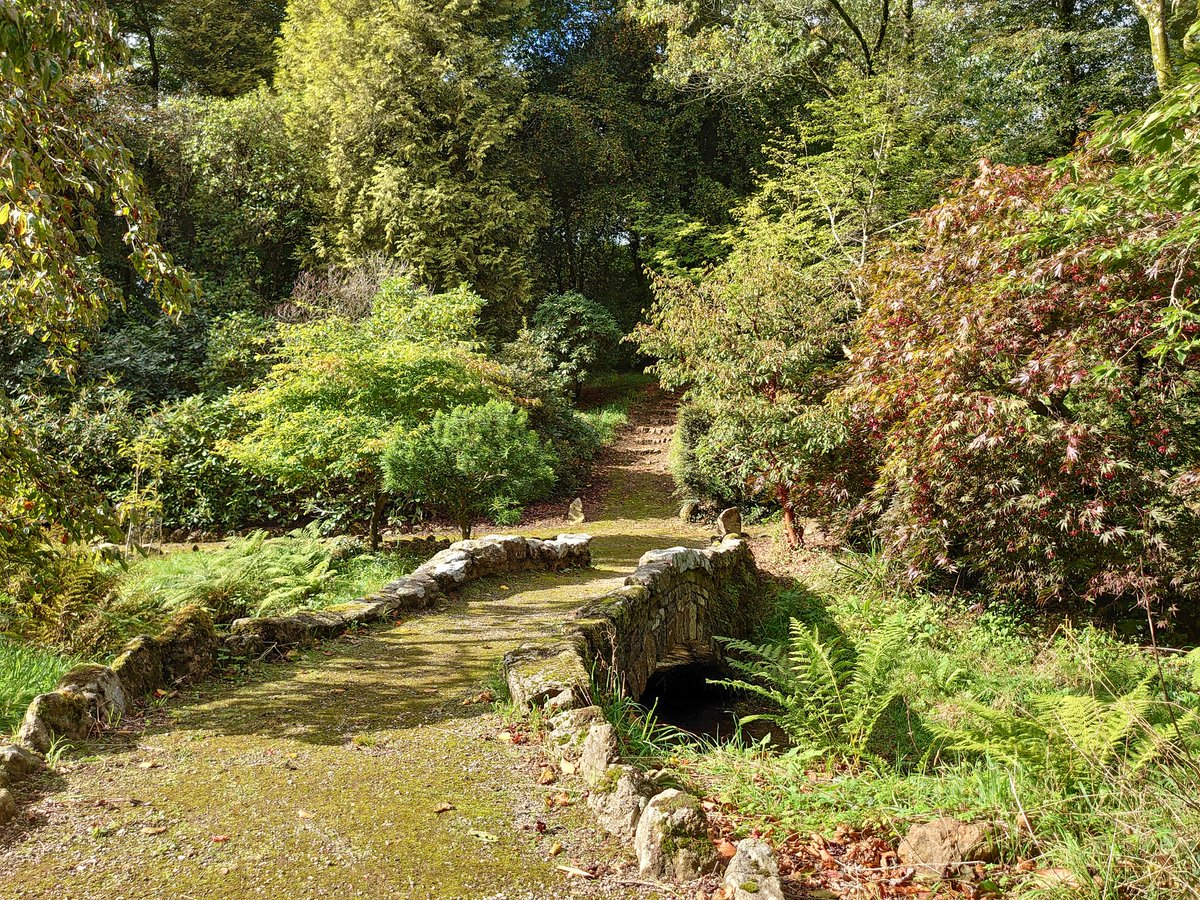 test Twitter Media - Lukesland Gardens.  Lukesland is a 24-acre family-run garden in Dartmoor National Park, on the edge of Ivybridge, in the South Hams, Devon. The autumn colours aren't quite visible in all their glory yet, but it's only a matter of time 😀📷🍁 #Ivybridge #Devon #Dartmoor #Autumn https://t.co/os4MOiwogL