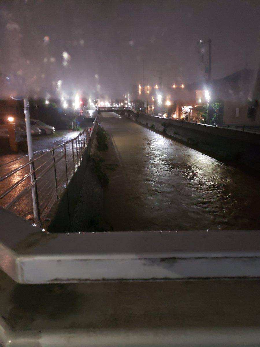 多摩川 タマちゃん 相模川氾濫詐欺 氾濫寸前 世田谷区に関連した画像-02