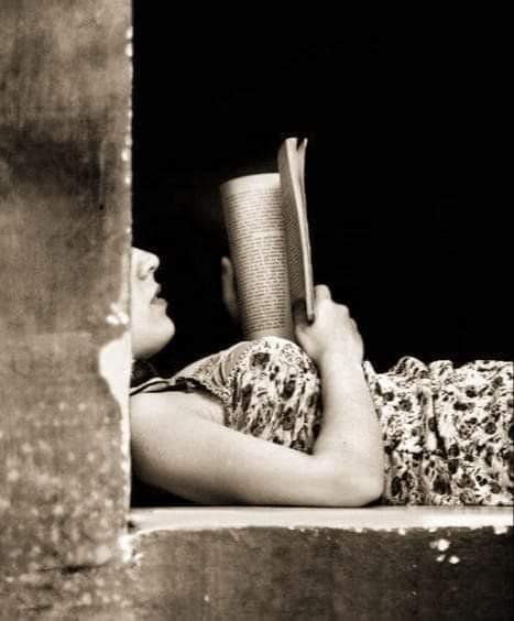 I libri sono  riserve di grano  da ammassare  per l'inverno dello spirito. Marguerite Yourcenar #OttobreCon ... i librie #CasaLettori @CasaLettori https://t.co/61gQeQISip