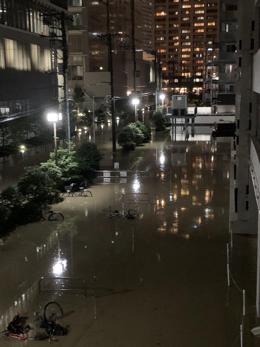武蔵小杉 多摩川決壊 ハザードマップ 汚水まみれ 二子玉川に関連した画像-07