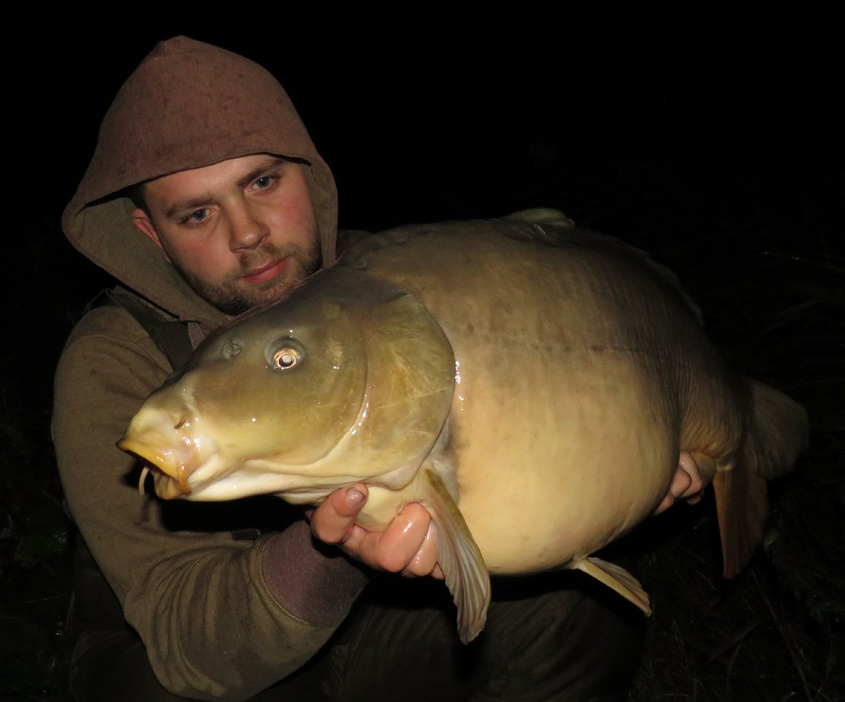 Had this one last night. Hopefully net another before <b>Tomorrow</b> weather feels right. #CarpFish