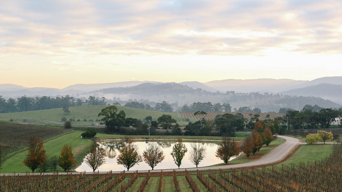 test Twitter Media - It's official, @yarra_valley's Oakridge Wines has been awarded best Chardonnay in Australia. https://t.co/tEsqqtXgFL https://t.co/0yLhmsDnbX