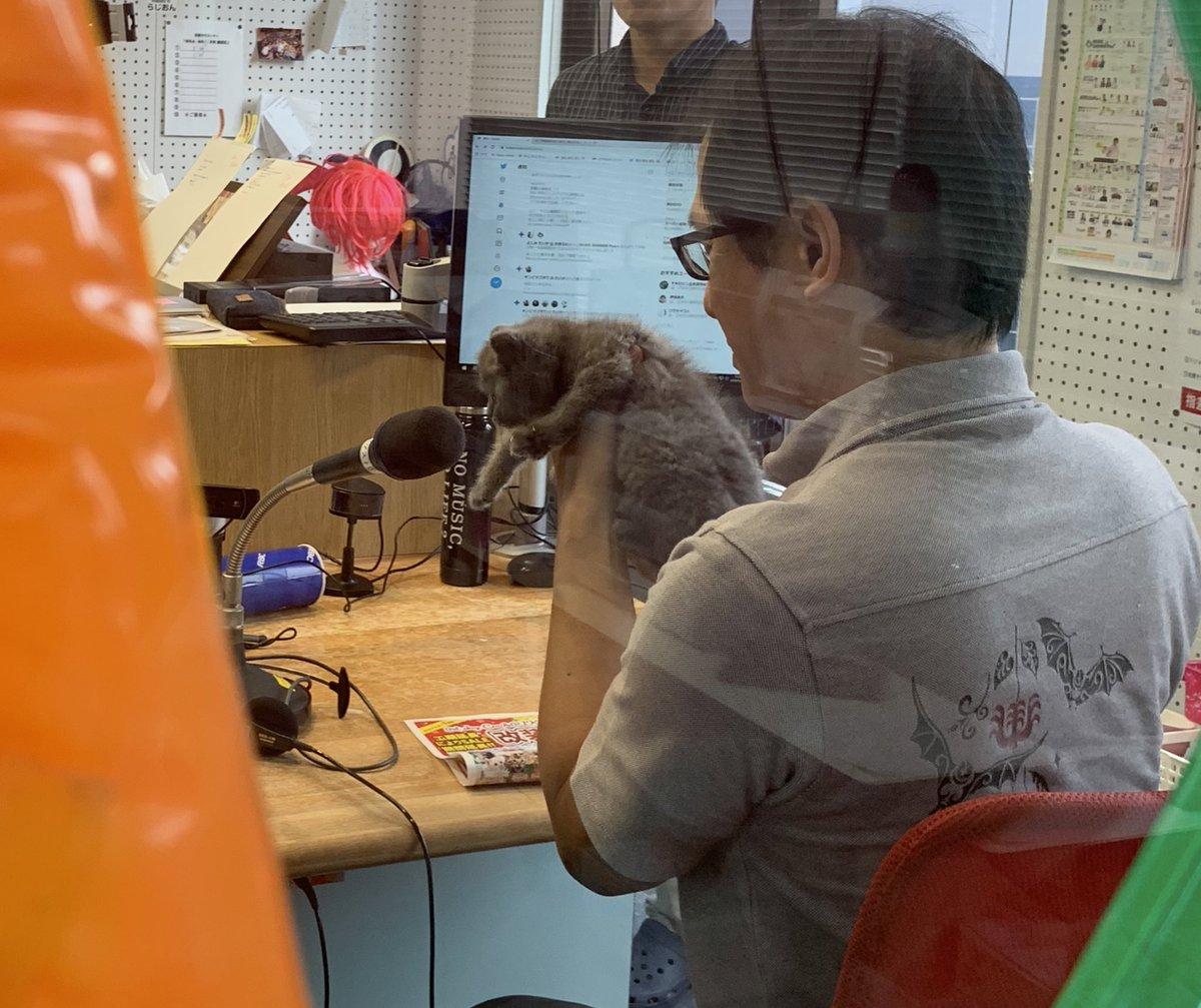 test ツイッターメディア - にゃんちゃん スタジオ はいりま〜す🐱 #villa738 #クーアンドリク https://t.co/pH3maBG28L