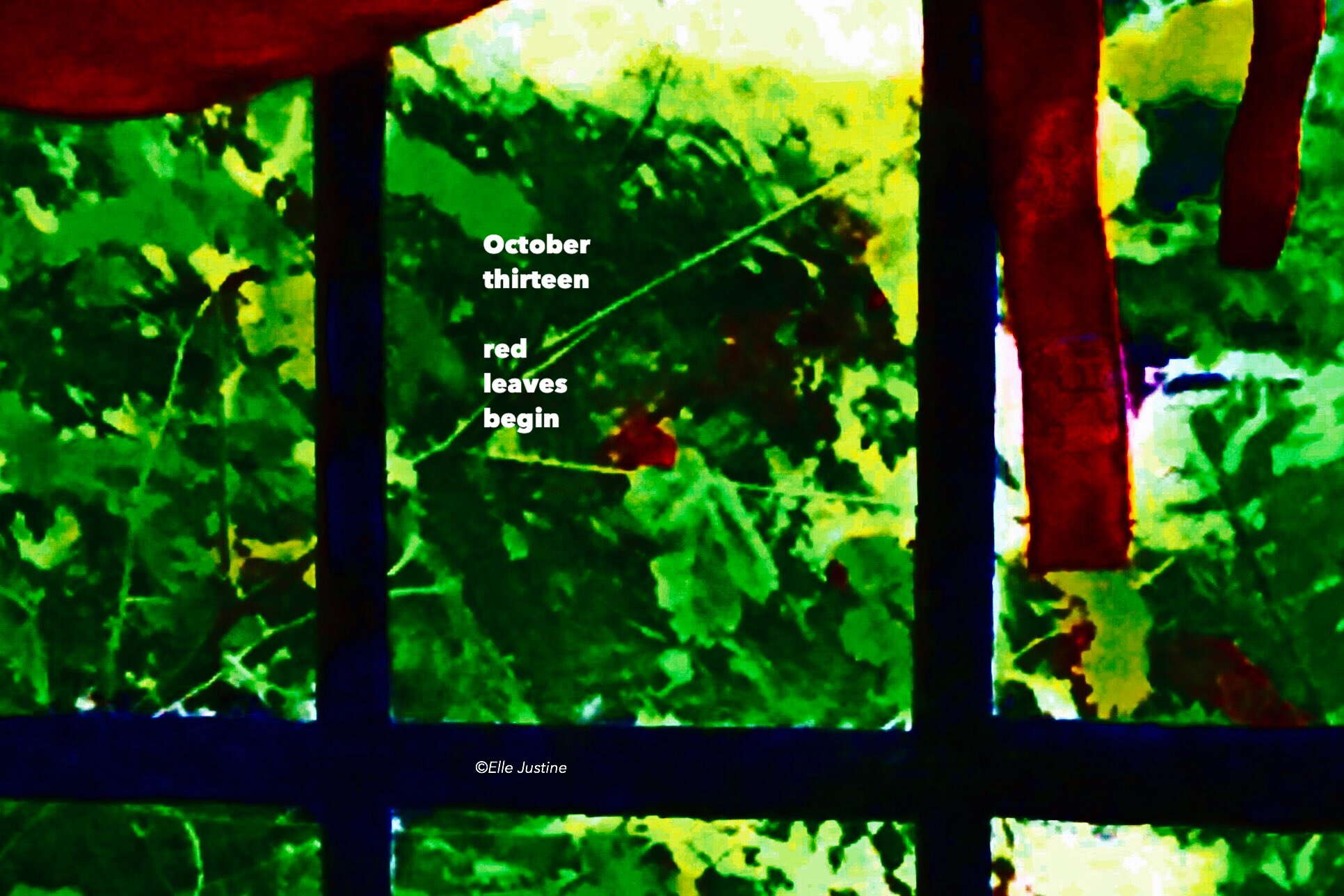 October thirteen  red leaves begin....                 #micropoetry #mpy https://t.co/5O82Fwdjmg