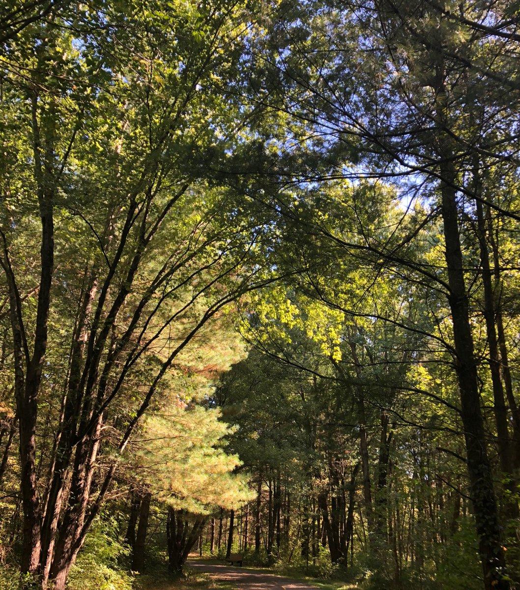 test Twitter Media - RT @MilliganPhD: Beautiful hike with CAHS Adventure Club @CbusMetroParks  @cahsmicpower  #3creeks https://t.co/fkBhqSTwDP