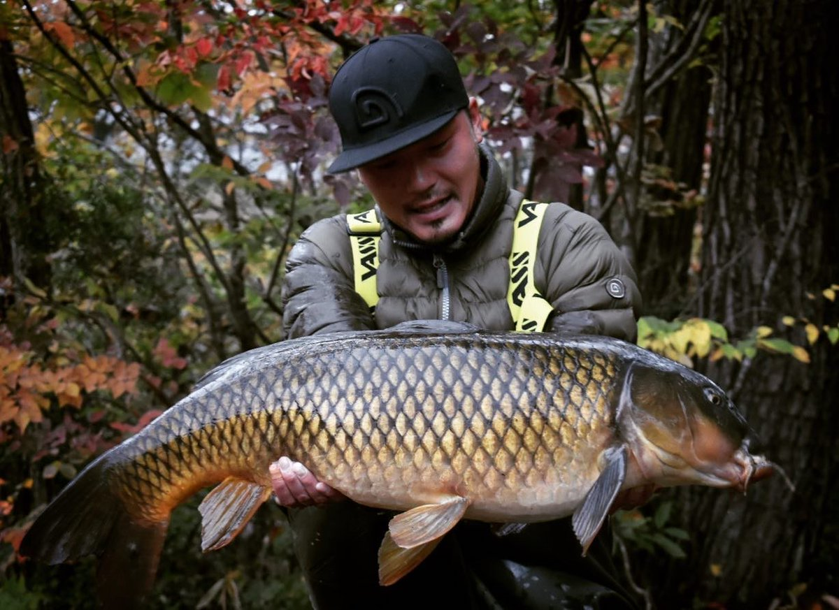 14.4kg for Tohru... #carpfishing #japan #vasswaders https://t.co/4rhJ49R88m