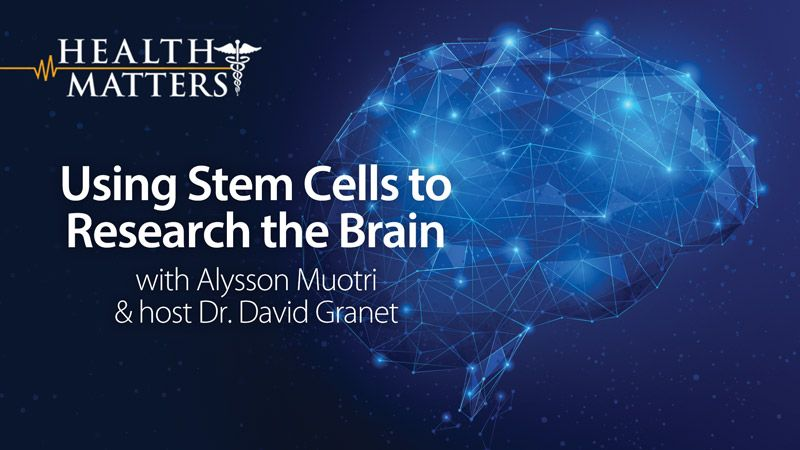 test Twitter Media - Find out about amazing research with Alysson Muotri who is using #StemCells to grow tiny versions of developing human brains in his lab to study everything from autism to the Zika virus. VIDEO: Using Stem Cells to Research the Brain - https://t.co/lcZ7OVizr8 https://t.co/FAziXOWHw4