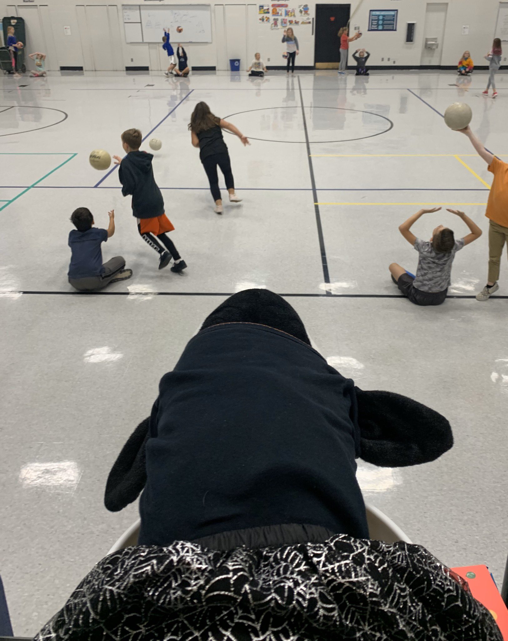Corca the Orca observing some volleyball skills in PE today. #lctitanhill #LCTitans https://t.co/UAlva5h06n