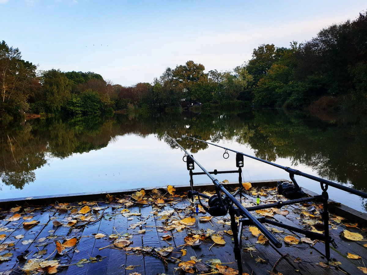 I love autumn #carpfishing <b>Https</b>://t.co/Wa61enSvFl