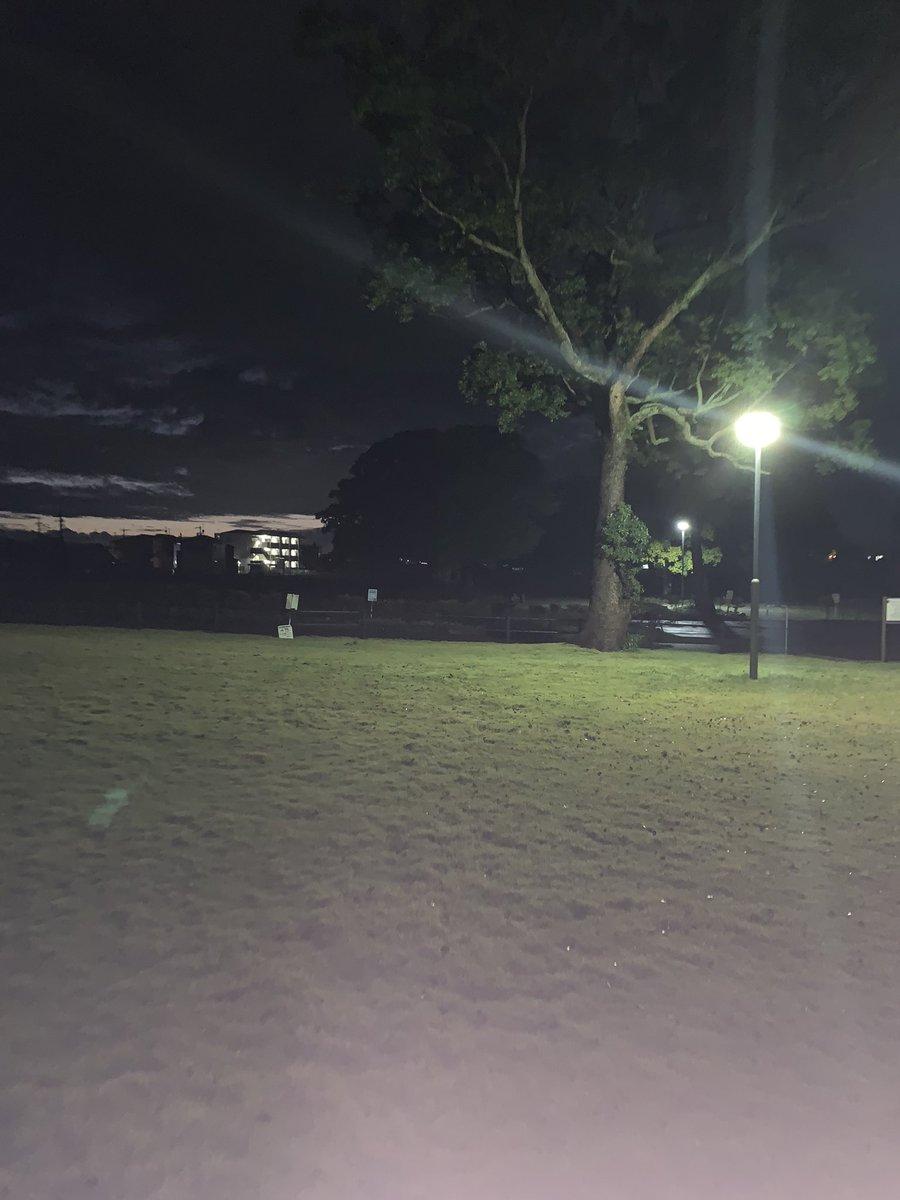 test ツイッターメディア - 雨上がりのベイビーステップ。今日は監査論で早稲田校以外の全校舎に電話を掛けたのはワタシです。 https://t.co/jAFeoywCRJ