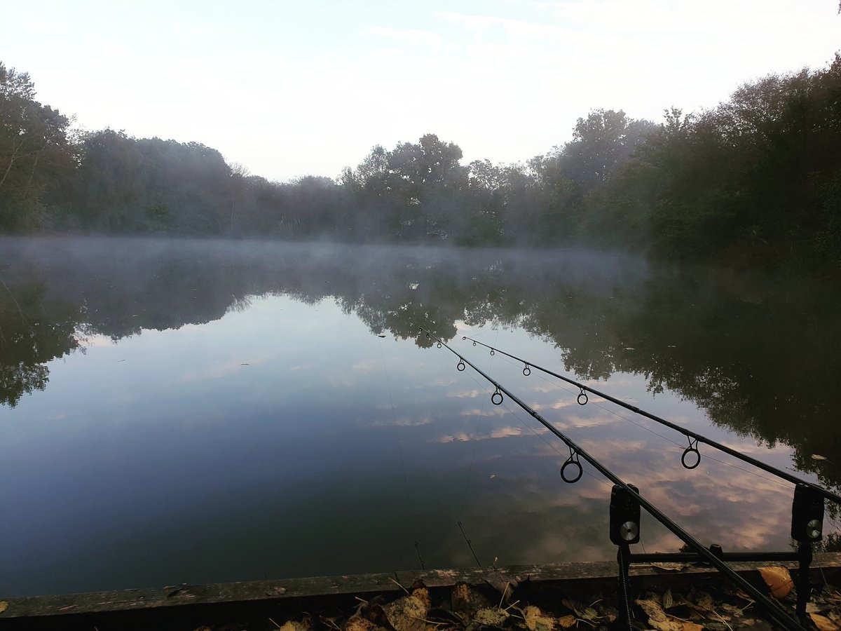 Good morning. Who's out and giving it a go <b>Today</b>? #carpfishing #fishing https://t.co/OlTNDfgf