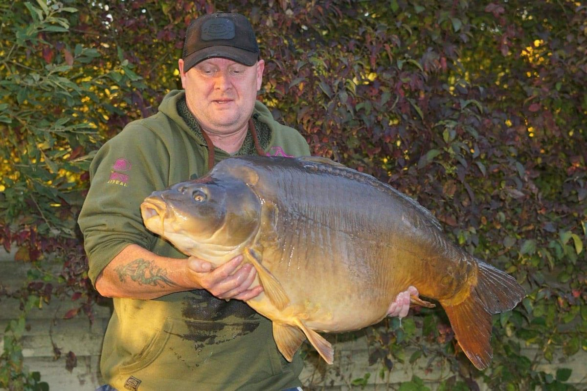 49lb French 🇫🇷 Chunk Steven Mcwlliam had last October 💪🏻🎣  @TheCARPbible  #Carp #Carp