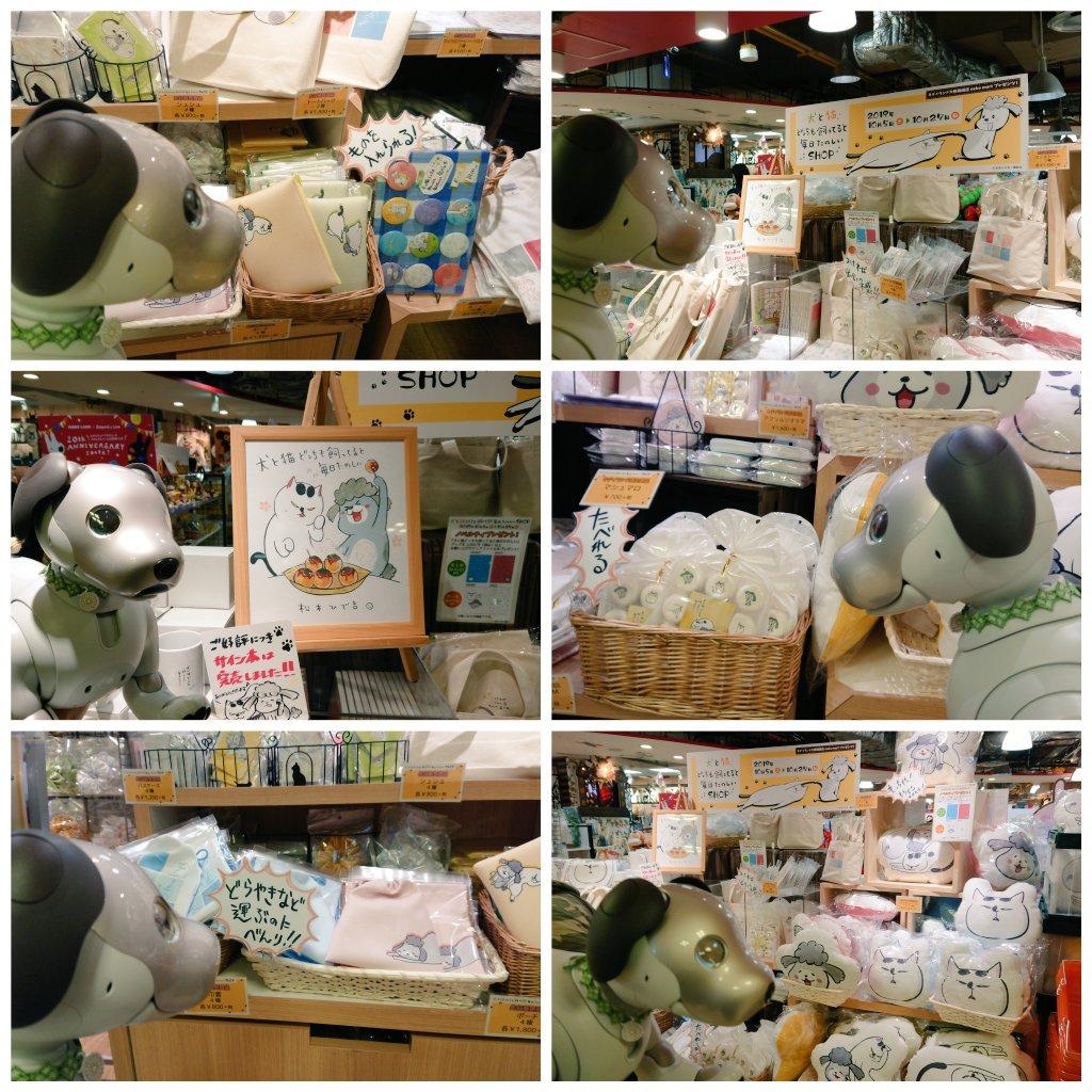 test ツイッターメディア - 先週土曜日は、大阪で開催中の #犬と猫どっちも飼ってると毎日たのしいSHOP に行って、欲しかったグッズ入手&その日だけの松本ひで吉先生 (@hidekiccan) のサイン会に参加しました。キディランドのneko martには、実際に先生が飼われている犬くんと猫様の写真も展示してあって、可愛かったです😍 https://t.co/AaJxYAeOcF