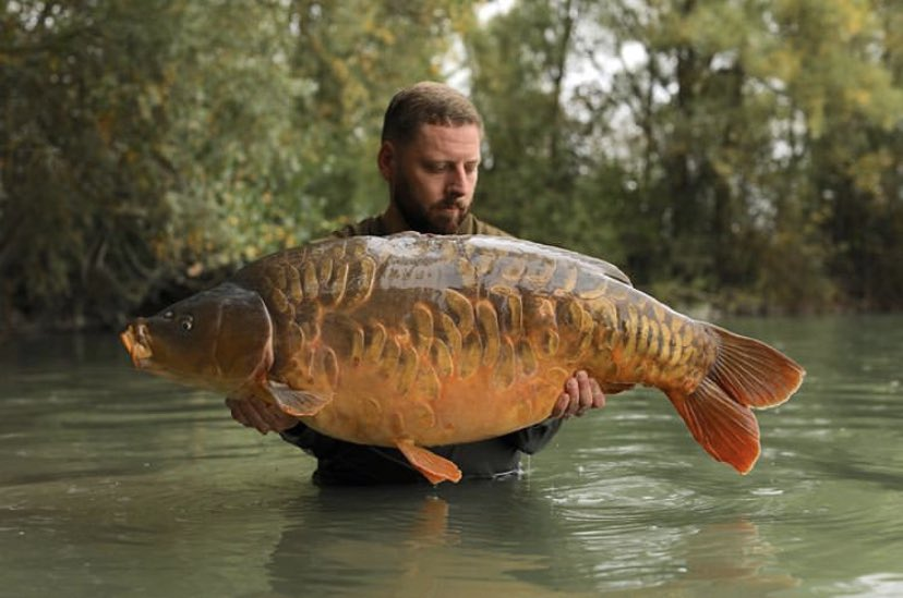 Well done Mike <b>💪🏻🎣</b> @GiganticaCarp  @TheCARPbible  #Carp #CarpFishing #Fishing https: