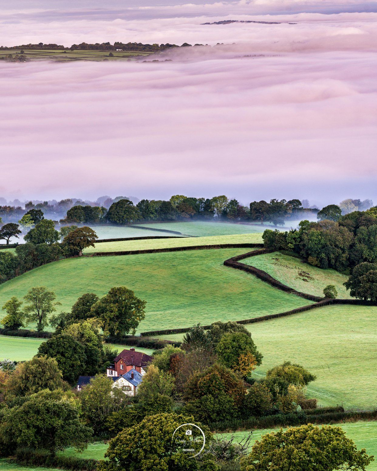 Today's photo is a foggy autumn morning over the beautiful East Devon countryside.... (click to see full photo) #Devon #LoveDevon   @ThePhotoHour @earthandclouds @VisitDevon @visitsouthdevon @EastDevonExcell https://t.co/IS4DLMct1h