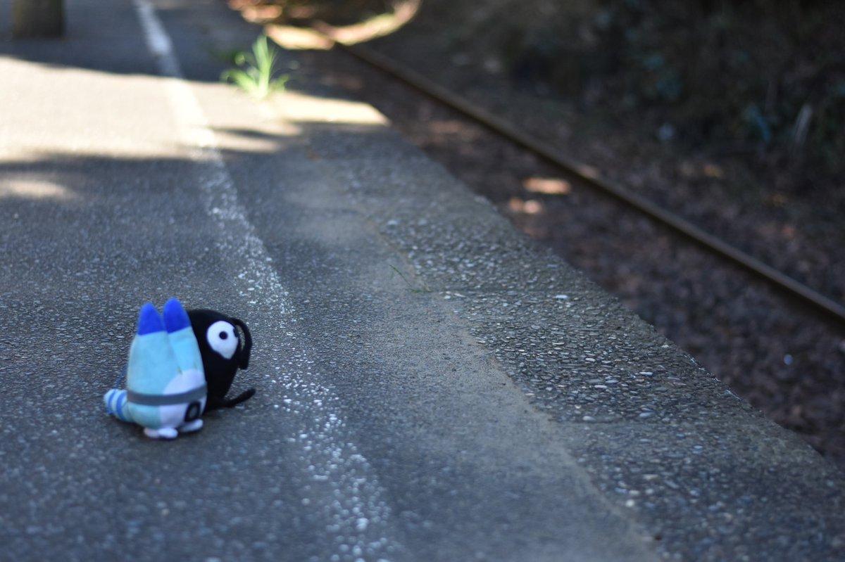 test ツイッターメディア - ゆるしととボスの旅ヽ(´ー`)ノ  #ゆるしと #ラッキービースト https://t.co/TiRMGDZzWx
