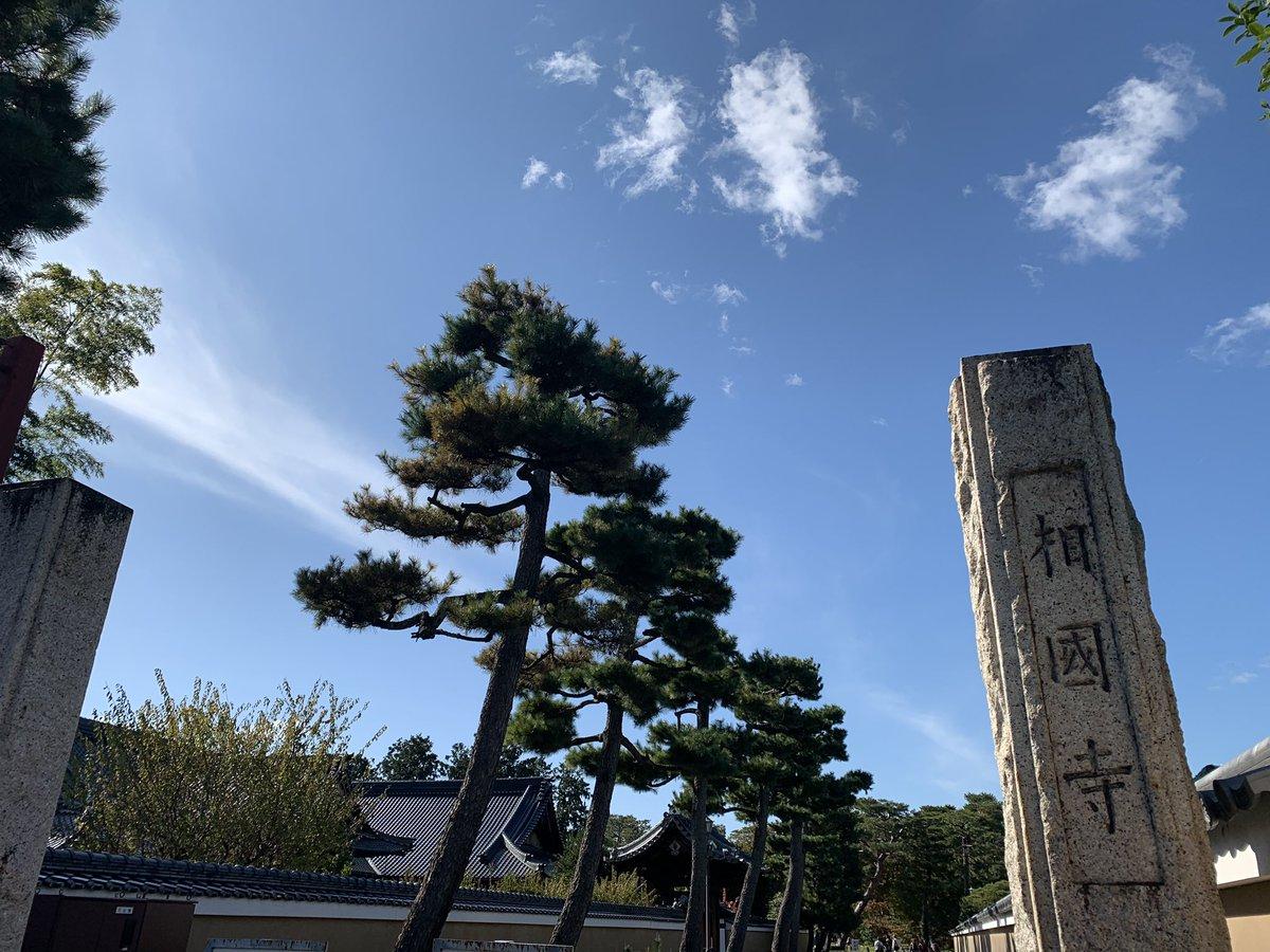 test ツイッターメディア - 京都人の密かな愉しみのロケ地巡りしてきました😆 紅葉には少し早かったけど、いい天気で巡礼日和ー☀️楽しかったー!! 広そうに見えた公園が小さかったり、ドラマの世界がリアルと繋がる感じが面白い✨ 幸太郎くんが食べてたクリームパン美味しかったよ😋 https://t.co/wEi3IkZtRN