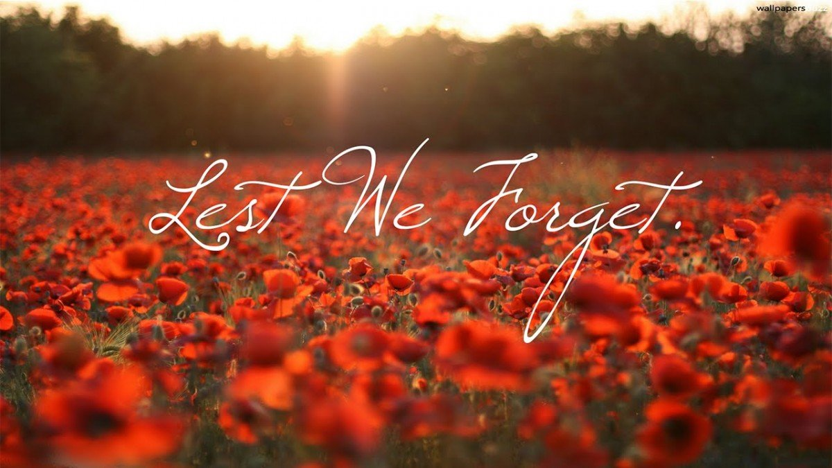 test Twitter Media - Today #WeRemember 🍁 Thank you to all those who have served and continue to serve our country.  #LestWeForget  #RemembranceDay https://t.co/HlBXDWFMvC