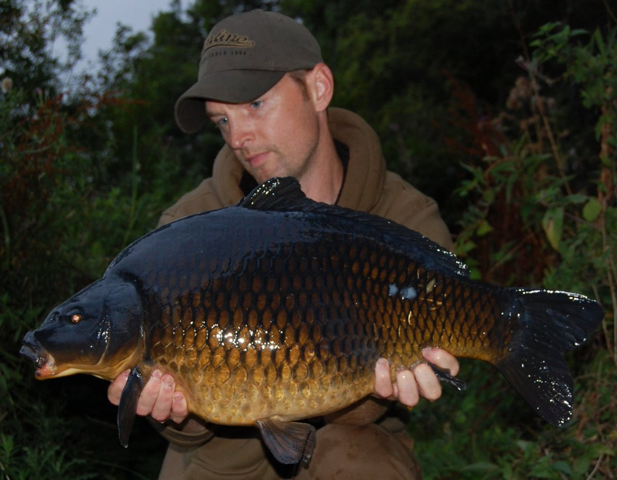 @MainlineBaits  One on this years black commons on Hybrid boilies #carpfishing #<b>Mainline</b>baits