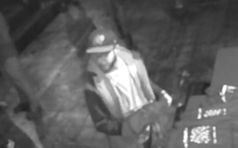Hi there, Merch thief! Got a fun video of you!