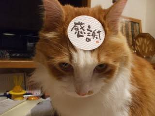 test ツイッターメディア - 最後は小腹が空いたので 味集中カウンター(笑)  通りもんをお土産に買いました。  これから東京に戻ります✈️ ありがとう博多😊 https://t.co/Xy5qr8t5wx