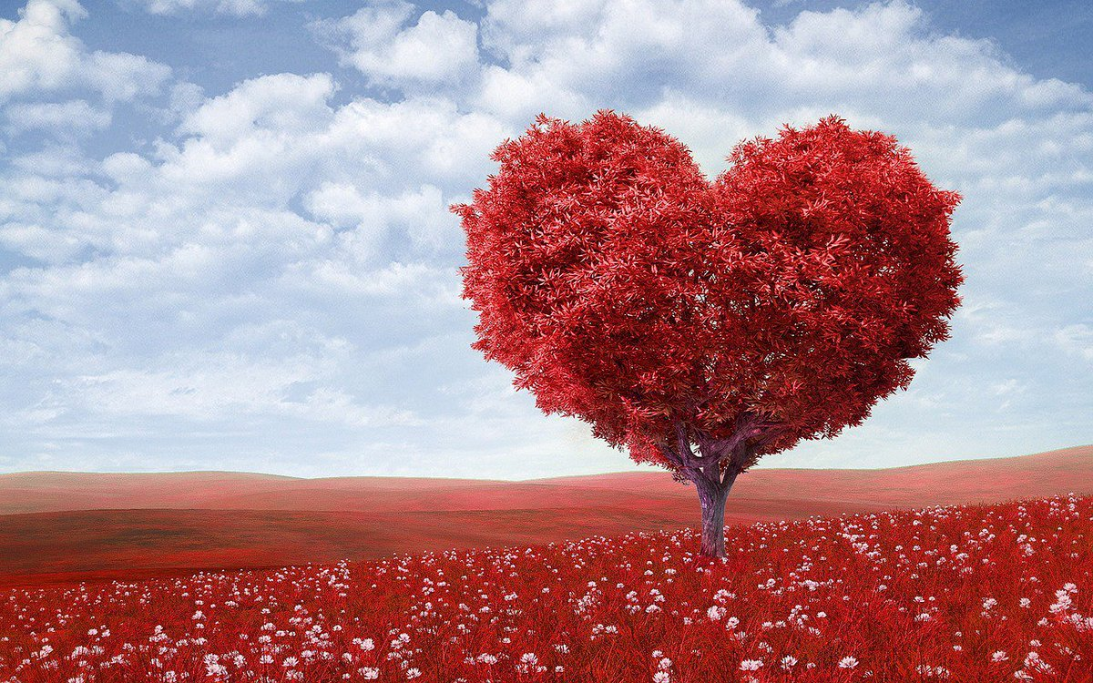 """""""Power is of two kinds. One is obtained by the fear of punishment and the other by acts of love. Power based on #love is a thousand times more effective and permanent then the one derived from fear of punishment."""" Mahatma Gandhi  #TuesdayThoughts #JoyTrain #Joy #GoldenHearts #IAM"""