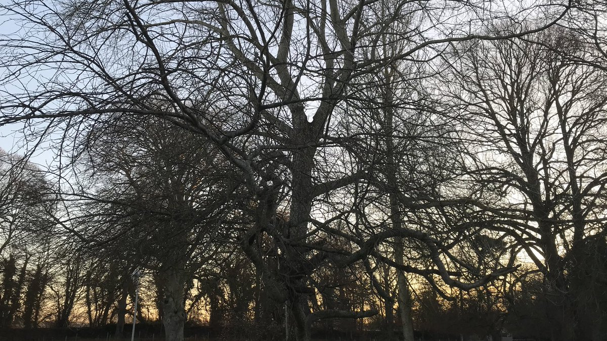 test Twitter Media - Beautiful cold morning here @Emmaus_Dublin  #TuesdayMorning https://t.co/IOk3ZiJetq