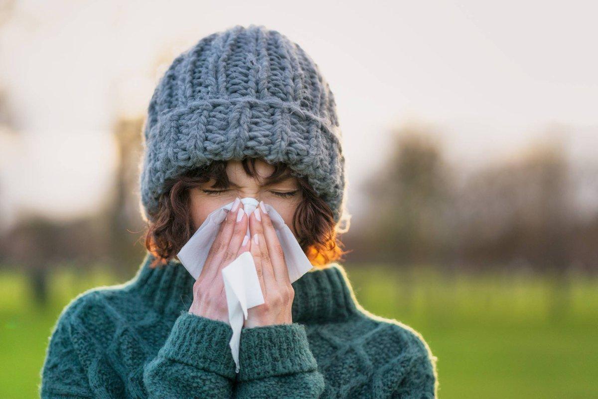test Twitter Media - ¿Gripe, resfriado o sinusitis? Estos son los síntomas y lo que dura cada uno. https://t.co/c1vuDYZgdl Vía: @el_pais https://t.co/MSGcUg2Vfc