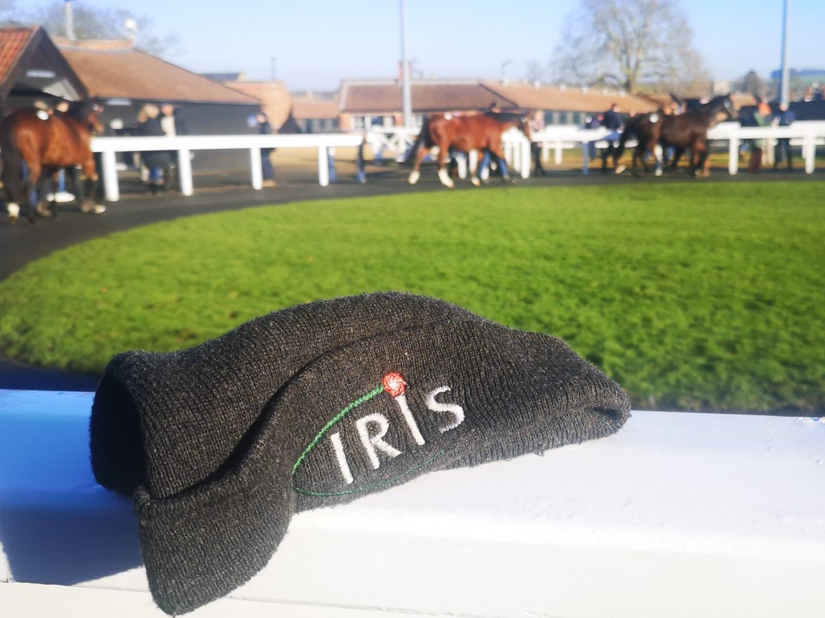 test Twitter Media - We're working with @ITBA_Official in Newmarket today at the December Mares Sales. https://t.co/J4acnmRyAs