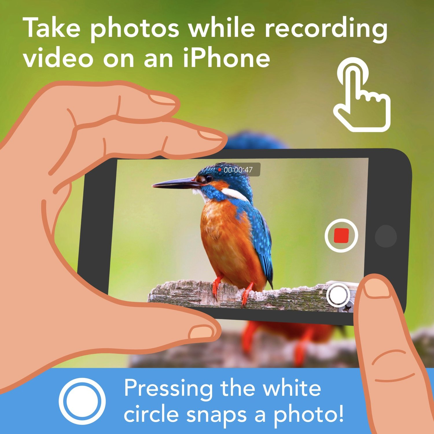 📸 You can snap a photo while recording video on an iPhone. Just press the white circle!   (Android also has this feature.) https://t.co/YPY7bYdqEZ