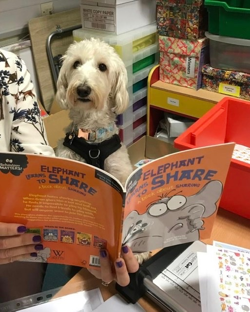 test Twitter Media - Mrs Haddock's not the only one who likes to read 🐕 https://t.co/9G98YvEHx1