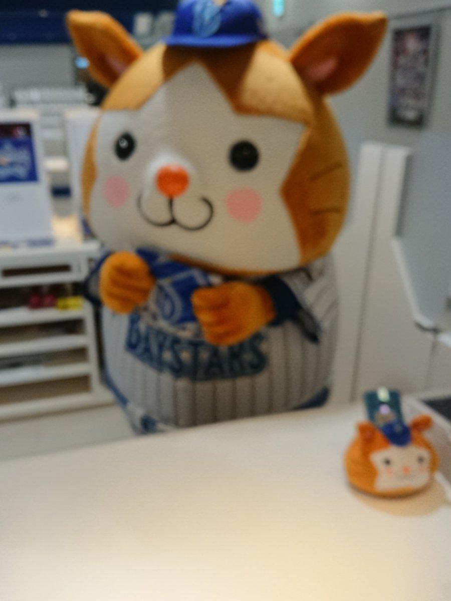 test ツイッターメディア - 来年2020はプロ野球&サッカー は神奈川チームが日本一になる 高校野球も神奈川代表チームが 春夏を連覇するぞ、神奈川が 来年はスポーツを制すると おもう人はいいねを宜しくです https://t.co/A5OxEHrvQi