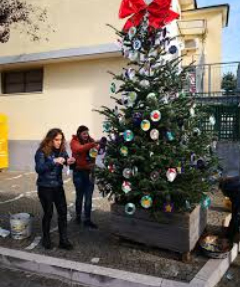 test Twitter Media - L'INIZIATIVA  #Natale green a #SanVitaliano, ecco l'albero #plasticfree  https://t.co/zeKCYVH5X6 https://t.co/Tw7CY5G9cN