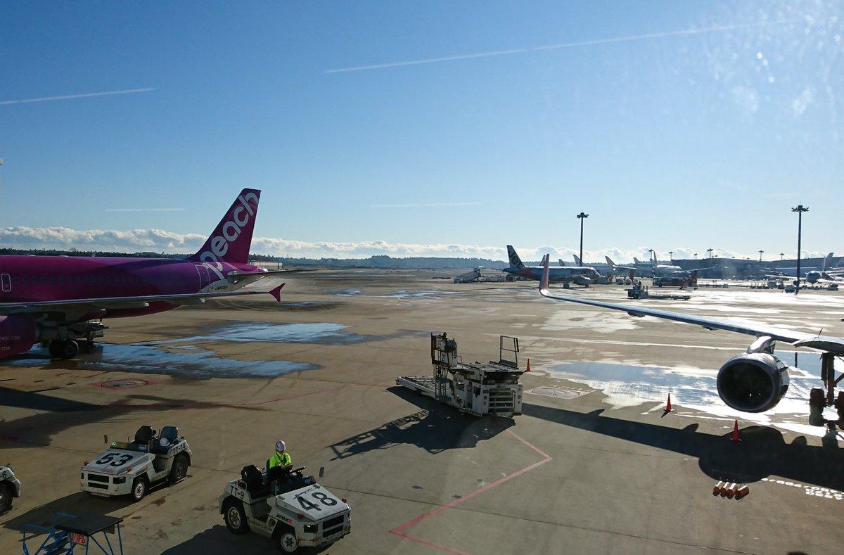 test ツイッターメディア - 成田空港に着いた🤓これから🍑 https://t.co/hZ1vym3kjk