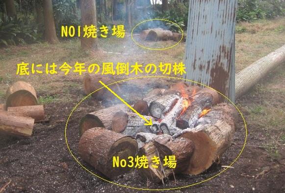 test ツイッターメディア - 昨年台風24号の風倒木整理続行中。裏山雑木林の大丸太は手で転がす事は出来るが、方向転換は重くて出来ないのでバールで転換してNo1焼き場に転がす。 No3焼き場を作る、今年の風倒木切株の上で昨年の風倒木と一緒に焼却中。 https://t.co/wXFFfprVZG
