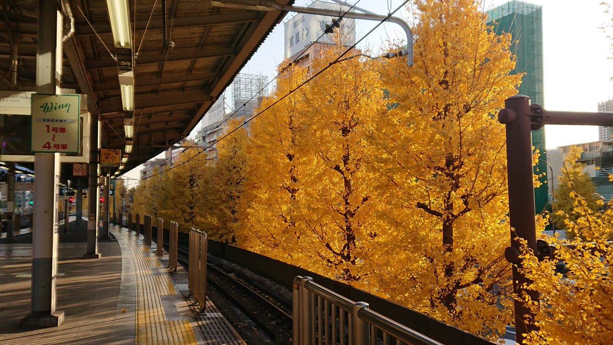 test ツイッターメディア - 小汚ない京急の駅で唯一キレイな所 https://t.co/LkA4DfRmhM