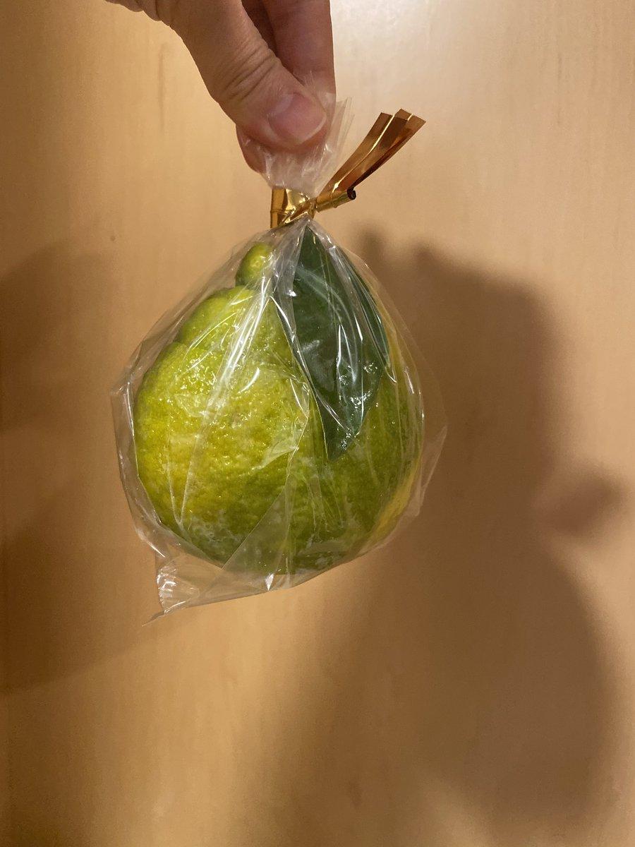test ツイッターメディア - 上田の老舗お菓子屋さん、みすず飴の三宝柑ゼリー。実家の母が買っておいてくれた。これ、最高に好き、美味しい🥰 上田にきたらぜひ食べてみてくださいね。確か、期間限定です! #三宝柑ゼリー #上田 #みすず飴 #飯島商店 https://t.co/kAn84ZJWVR