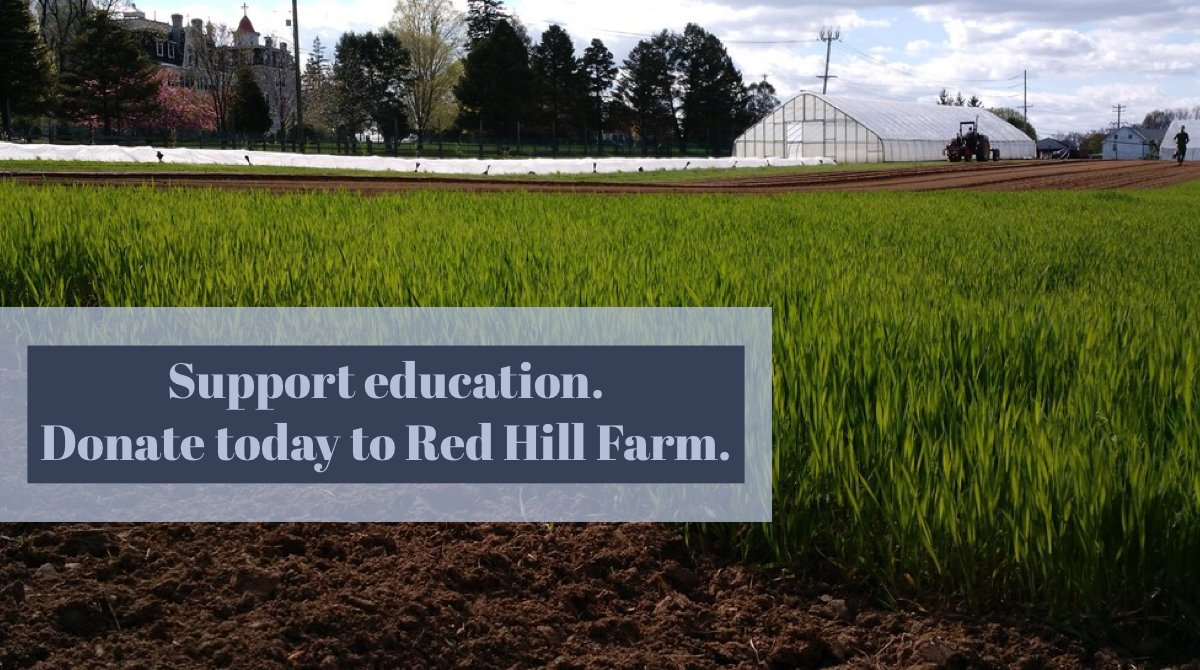 test Twitter Media - At Red Hill Farm, we focus on educating children in the local community through health, science, and the arts programs. Support us today: https://t.co/yGoyWPZ726. #RedHillFarm, #SistersofStFrancis https://t.co/lk7FrLk0tY